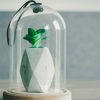 decoracion de casa, ceramica en un vidrio