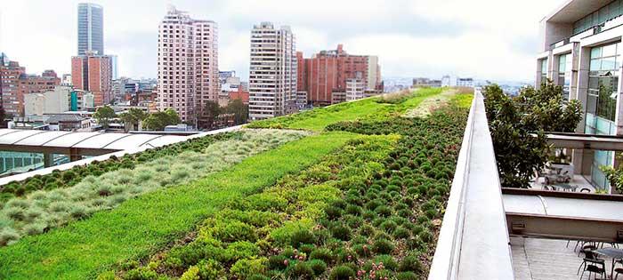 Techo verde desarrollado por empresa Zinco Andina Chile para Dancaru.com