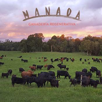 Animales pastando, marca Manada, para directorio Dancaru.com