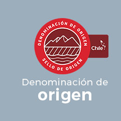 Sello de Origen Inapi Chile, DENOMINACIÓN DE ORIGEN