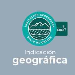 Sello de Origen Inapi Chile, INDICACIÓN GEOGRÁFICA